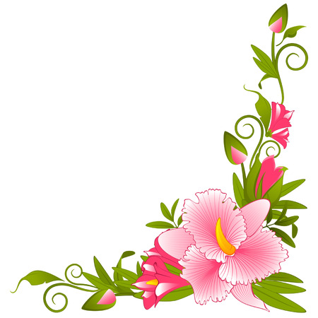 Beautiful orchid on the background Stock Vector - 8763944