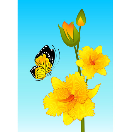 Beautiful orchid on the background with butterfly Vector