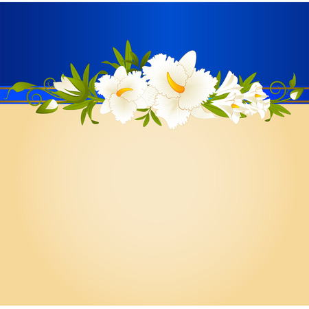 Beautiful orchid on the background Vector