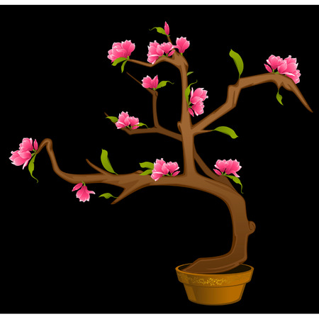 Beautiful bonsai with flowers Stock Vector - 9092659