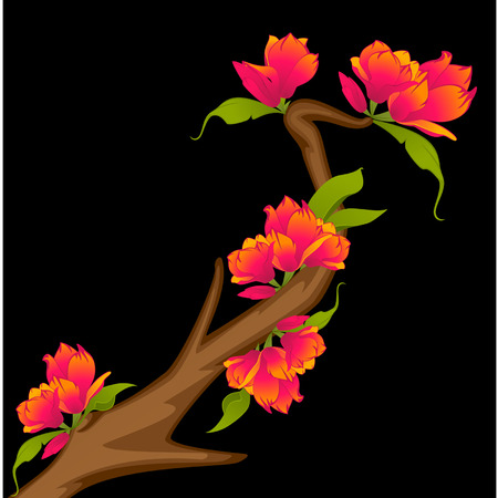 Beautiful bonsai with flowers Vector
