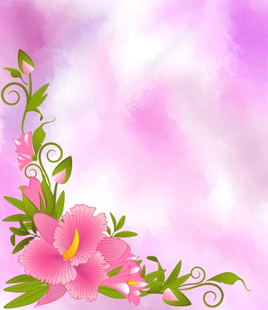 taffy: Beautiful Lily,orchid, taffy on the background
