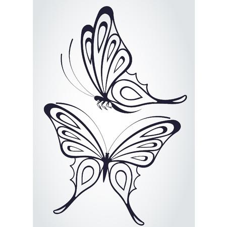�white: Mariposa tropical sobre un fondo blanco. Vectores