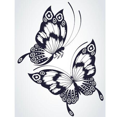 farfalla nera: Farfalle tropicali su sfondo bianco. Vettoriali