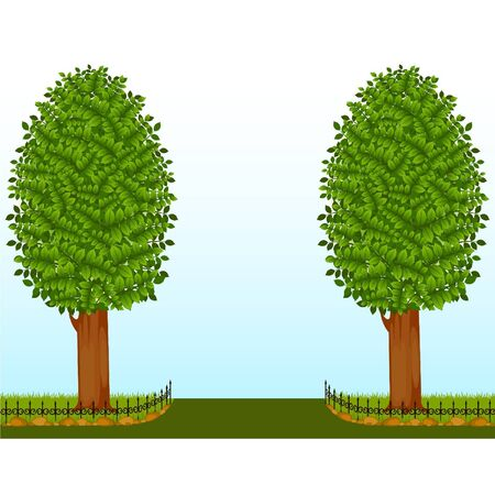 Beautiful trees with fence Vector