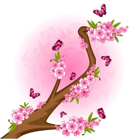 Beautiful bonsai with flowers and butterflies Vector