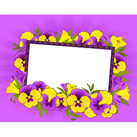 pansy: Pansy with lace ornaments on background Illustration