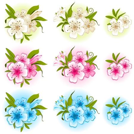 ladenkast: Bloemen op de witte achtergrond. Stock Illustratie