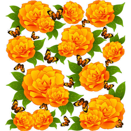 Roses and butterfly on the white background Vector