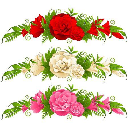 Roses en el fondo blanco