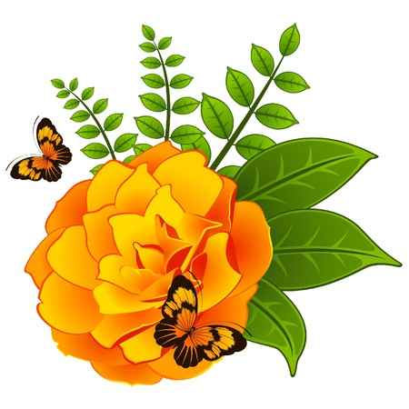 Yellow rose with butterfly Vector