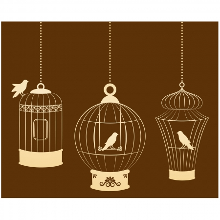 Vintage ornamental birdcages and birds Vector
