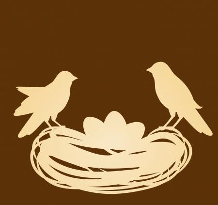 birds nest: Birds in nest with eggs