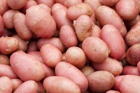 russet: pink potatoes Stock Photo