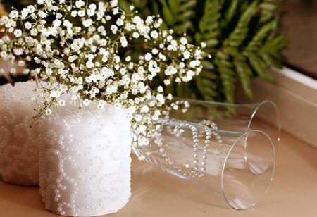 白い美しい花