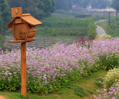 wooden mailbox at Doi Angkang, Chiangmai, Thailand photo
