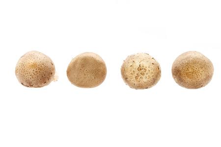 Whole raw Shitake Mushrooms isolated on white