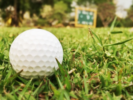 Golf ball in the yard