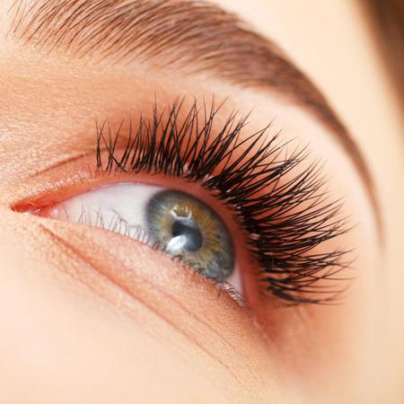 cerrar: Ojo de la mujer con largas pestañas. Extensión de pestañas Foto de archivo