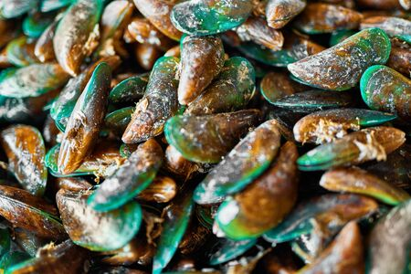 viridis: Healthy Food. Seafood Background. Closeup Of Fresh Gourmet Asian Green Mussels ( Perna Viridis, Green-lipped Mussels, Oysters ) At Fish Market In Koh Samui, Thailand, Asia. Nutrition And Diet. Stock Photo