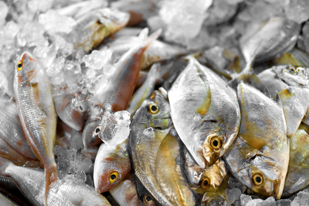 d: Fresh Food, Raw Fish Background. Close Up Of Fresh Caught Malabar Trevally Fish On Ice At Fish Market In Thailand, Asia. Seafood. Healthy Eating Concept. Nutrition, Diet And Vitamins.