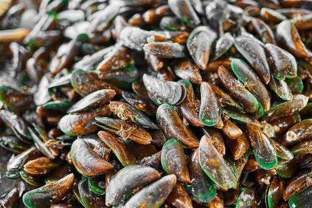 Gezond eten. Seafood Achtergrond. Close-up Van Verse Gourmet Asian Green Mosselen (Perna Viridis, Green lippen mosselen, oesters) op de vismarkt in Koh Samui, Thailand, Azië. Voeding en dieet. Stockfoto