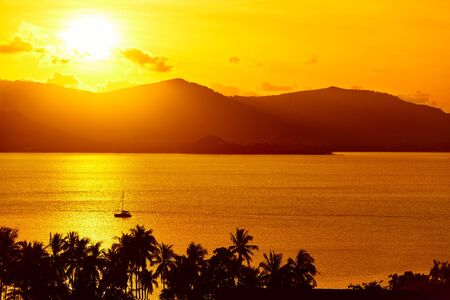 background scenery: Nature Background. Scenic View Landscape Of Tropical Island Coast At Orange Sunset Over Beautiful Sea With Floating Boat And Palms Silhouette. Scenery. Travel To Thailand. Tourism. Summer Vacation