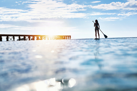 freedom leisure activity: Summer Water Sports. Silhouette Of Free Fit Woman Paddling, Stand Up On Paddle, Surf Board In Sea. Holidays Travel Vacation. Healthy Lifestyle. Recreation. Leisure Activity. Freedom, Wellness Concept