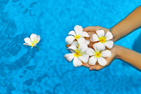 aromatherapy: Woman Health Concept. Summer Relax. Female Hands Holding Tropical Spa Flowers, White Frangipani ( Plumeria Alba ) In Fresh Clear Swimming Pool Water. Wellness, Beauty, Freshness. Summertime Vacation