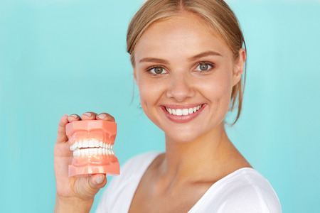 a tooth are beautiful: Dentistry. Closeup Portrait Of Beautiful Smiling Woman With White Smile, Healthy Teeth Holding Artificial Dental Model Of Human Jaw. Oral, Dental Health, Tooth Care Concepts. High Resolution Image