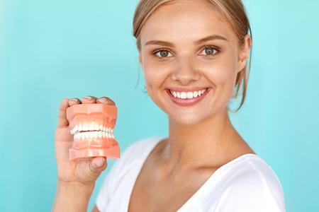 dentier: Dentisterie. Gros plan Portrait de belle femme souriante avec le sourire blanc, dents saines Tenir artificielle dentaire Modèle de la mâchoire humaine. Oral, soins dentaires, soins dentaires Concepts. Image à haute résolution