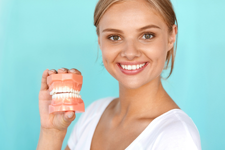 Dentistry. Closeup Portrait Of Beautiful Smiling Woman With White Smile, Healthy Teeth Holding Artificial Dental Model Of Human Jaw. Oral, Dental Health, Tooth Care Concepts. High Resolution Image