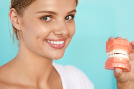 artificial teeth: Dentistry. Closeup Portrait Of Beautiful Smiling Woman With White Smile, Healthy Teeth Holding Artificial Dental Model Of Human Jaw. Oral, Dental Health, Tooth Care Concepts. High Resolution Image