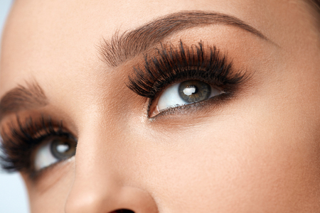 Long Black Eyelashes. Closeup Of Beautiful Female Eyebrows And Big Eyes With Fake Lashes. Woman With Soft Smooth Healthy Skin, Glamorous Professional Facial Makeup. Beauty Concept. High Resolution