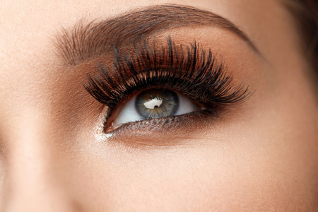 Long Black Eyelashes. Closeup Of Beautiful Female Eyebrow And Big Eye With Fake Lashes. Woman With Soft Smooth Healthy Skin And Glamorous Professional Facial Makeup. Beauty Cosmetics. High Resolution Stock Photo