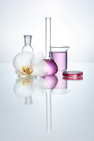 Laboratory Transparent Glassware With Chemical Liquid And Flower Orchid On White Background. High Resolution.