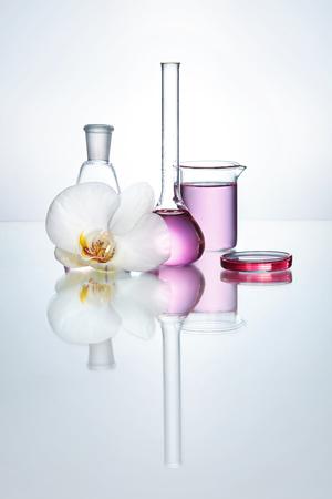 Cristalería transparente de laboratorio con líquido químico y orquídea de flores sobre fondo blanco. Alta resolución. Foto de archivo