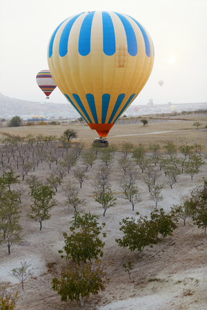 Colorful Hot Air Balloon With Basket In Field With Trees, Ballooning In Nature Landscape Of Cappadocia. High Resolution Standard-Bild - 115069445