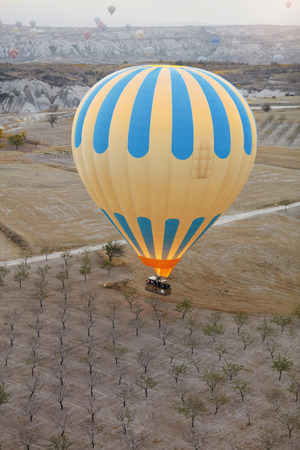 Colorful Hot Air Balloon With Basket In Field With Trees, Ballooning In Nature Landscape Of Cappadocia. High Resolution Standard-Bild - 115069672