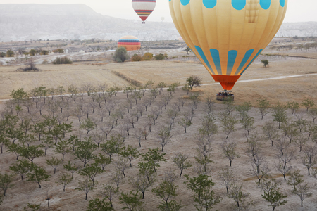 Colorful Hot Air Balloon With Basket In Field With Trees, Ballooning In Nature Landscape Of Cappadocia. High Resolution Standard-Bild - 115069680