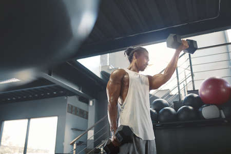Man On Dumbbells Workout. Sexy Asian Sportsman With Strong, Healthy, Muscular Body Using Heavy Fitness Equipment For Biceps Training At Gym. Bodybuilding As Lifestyle.