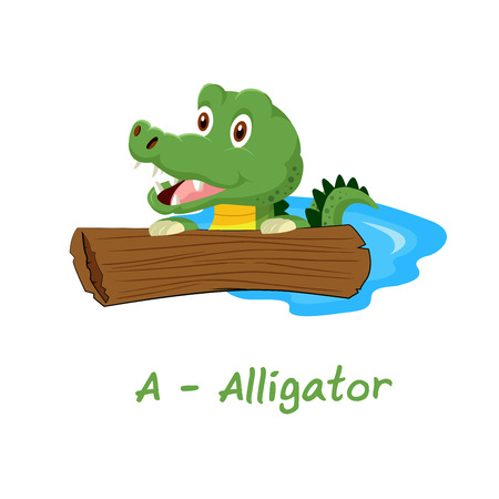 alligator isolated: Isolated animal alphabet for the kids, A for Alligator