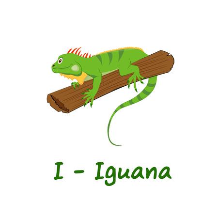 아이를위한 고립 된 동물 알파벳, 이구아나에 대한 일러스트