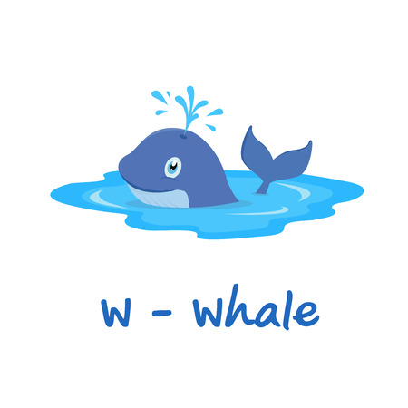 gray whale: Isolated animal alphabet for the kids, W for Whale