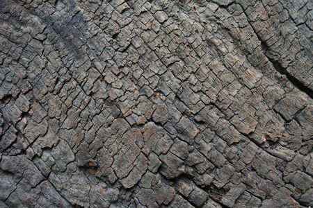 splinter: wood background texture