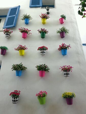 backdrop: Colorful of flowerpots