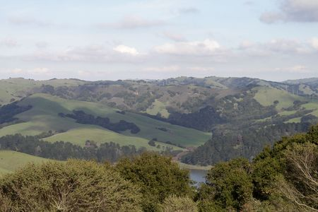 View of green hills partly covered with woods, trees on foreground Stock Photo