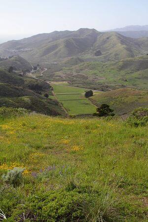 背景の山の夏の日に丘の上表示します。 写真素材