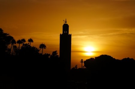 north africa: The Koutoubia mosque in sunset, Marrakech,North Africa