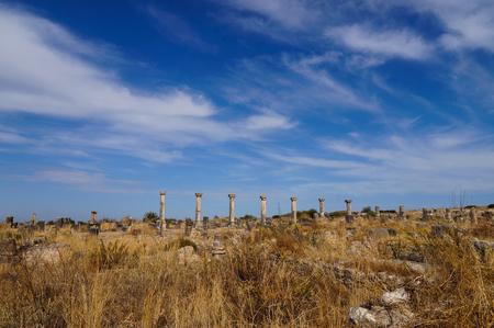 afrique du nord: Ruines de basilique romaine au Maroc, en Afrique du Nord - Volubilis Banque d'images